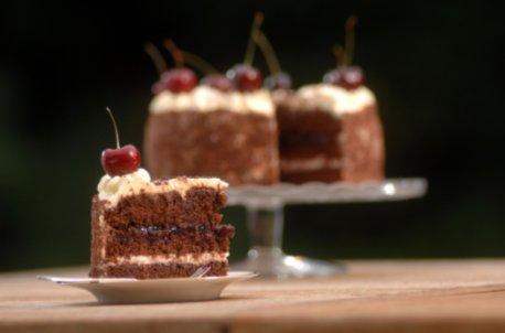 Nikki's Little Cake Company